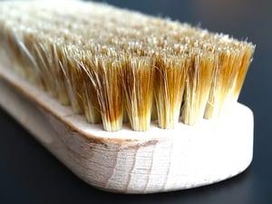 brush-629657_640